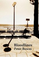 Bloodlines on Kindle