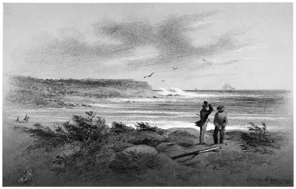 "Pencil sketch entitled ""Bondi Bay"", by S.T. Gill, ca. 1863."
