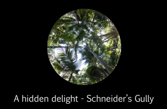 A hidden delight2